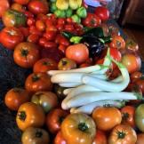 Farm to table veggies